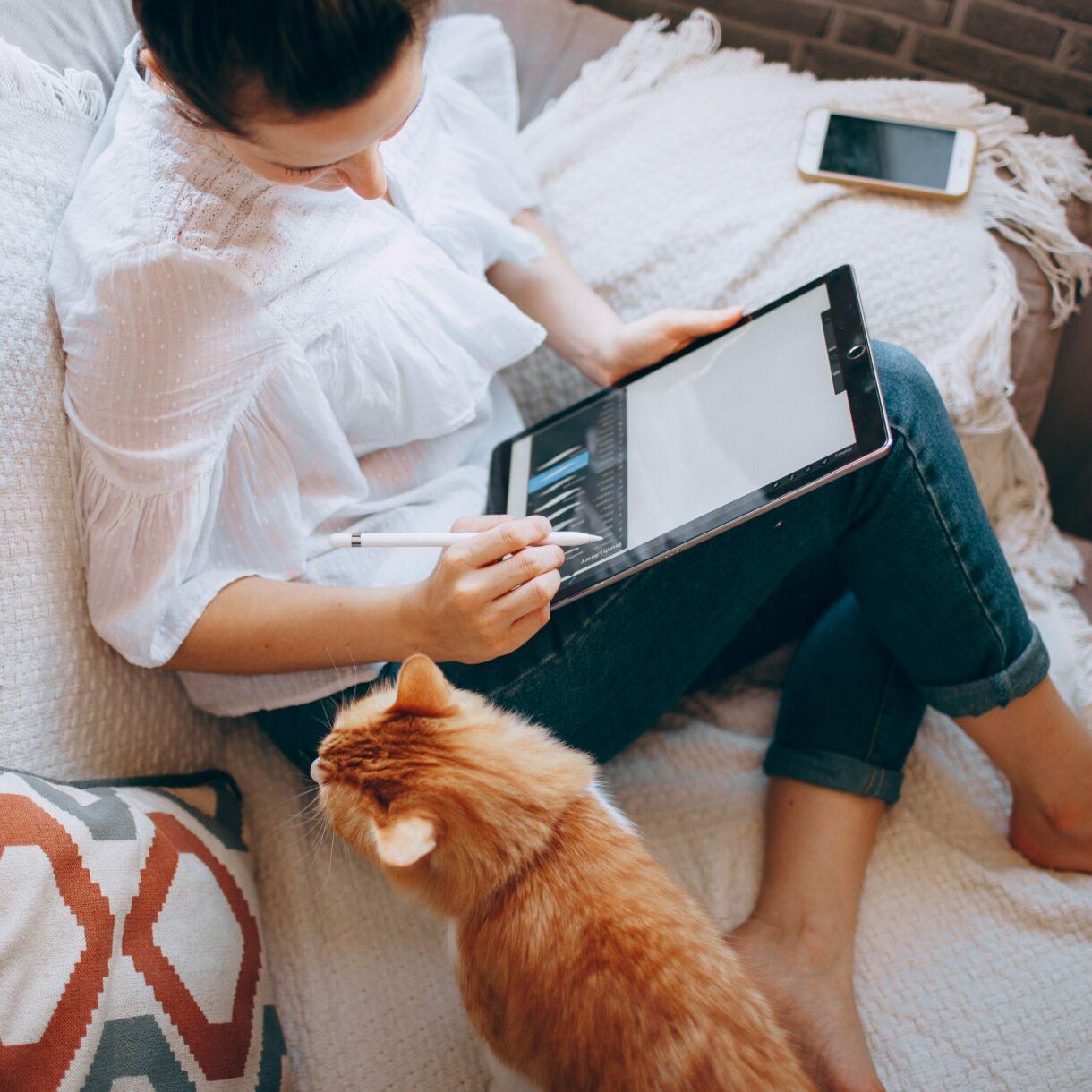 online lernen macht spaß